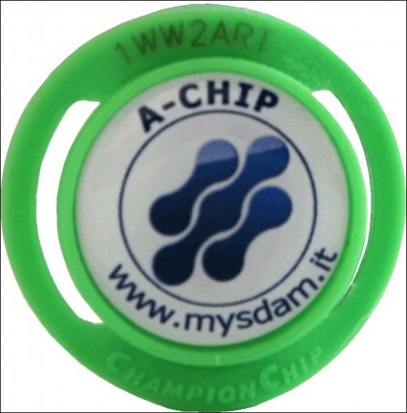 Abilitazione A-Chip x il 2013