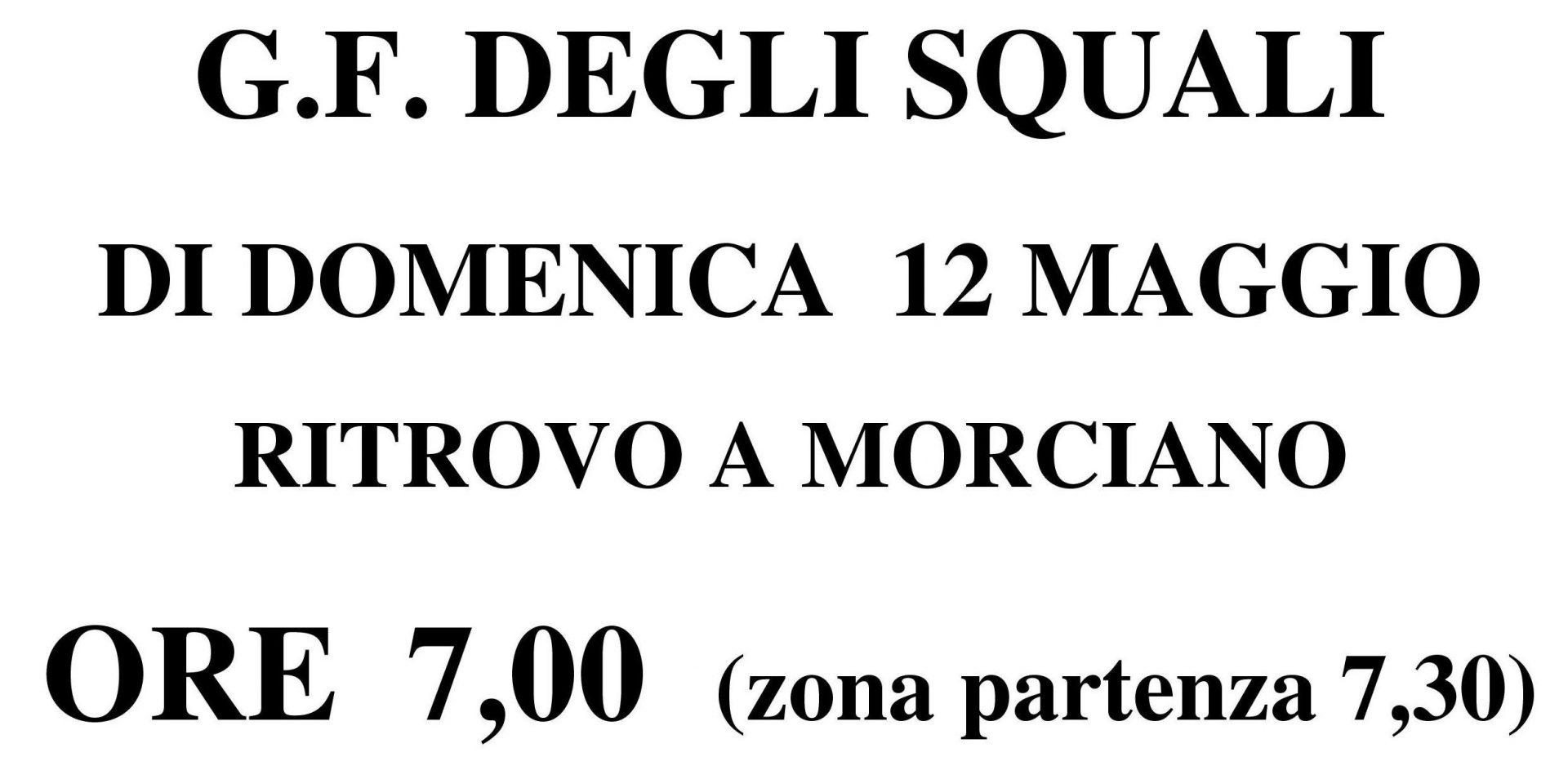 Domenica 12-05-2019 GF Squali